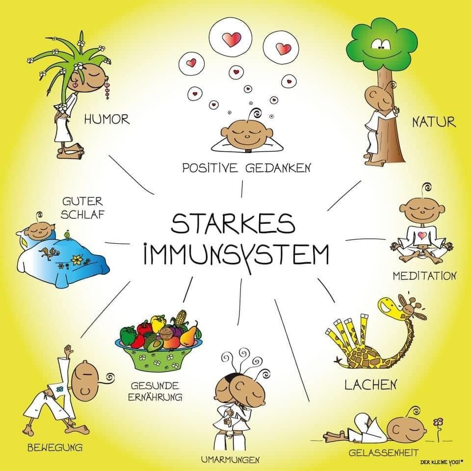Immunsystem<br>stärken